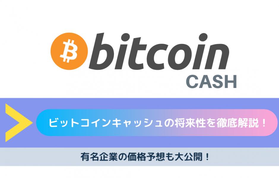 bitcoincash 将来性