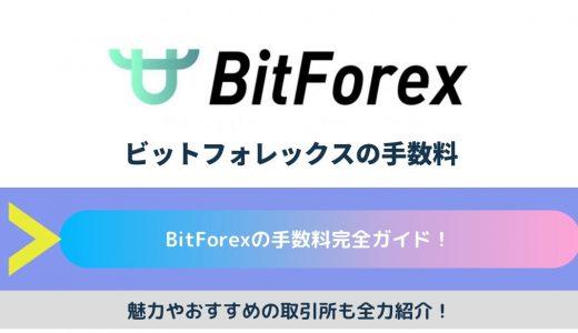 BitForex(ビットフォレックス)の手数料完全ガイド!魅力や取引所を全力紹介!
