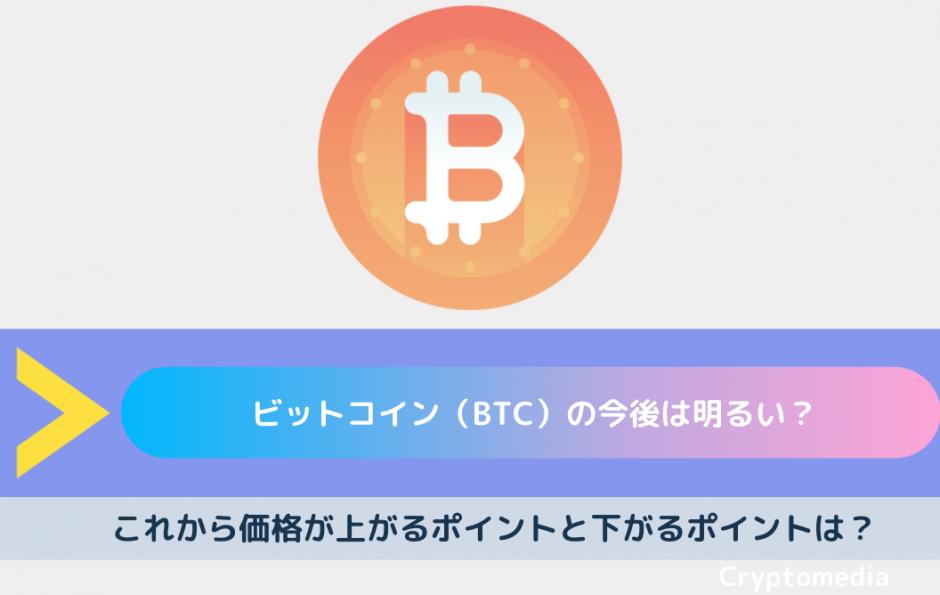 ビットコイン 今後
