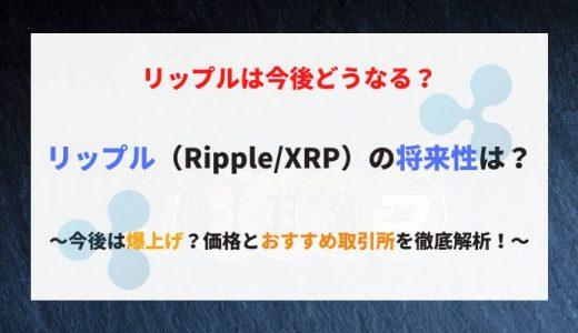 【リップル(XRP/Ripple)の将来性や今後】2020年は爆上げ?チャートの動向・価格とおすすめ取引所を徹底解析!