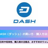 dash 買い方
