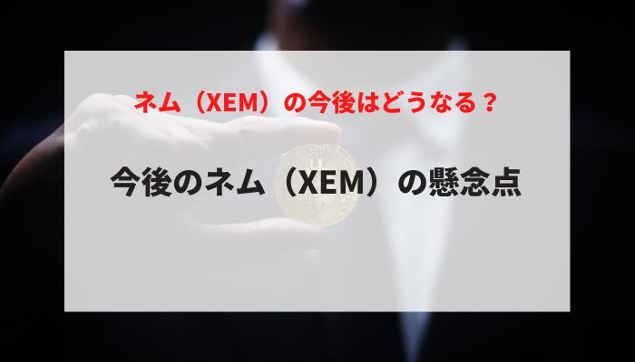 今後のネム(XEM)の懸念点